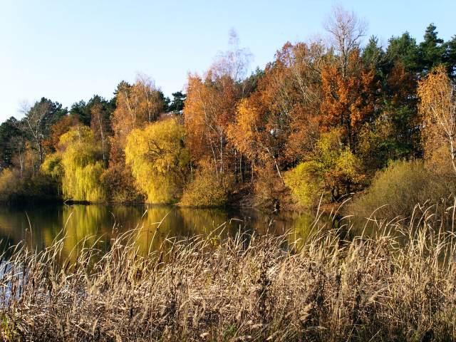 Podzim  Podzim