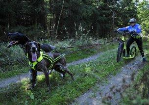 Tažení koloběžky dvěma psy - klikněte pro zobrazení detailu
