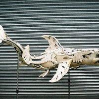 Žralok - klikněte pro zobrazení detailu